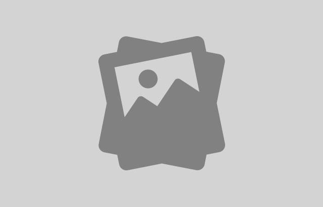 Br'stovska špargljada, koloosmica in pohod (Brestovica pri Komnu)