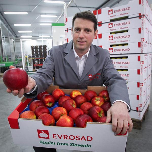 Slovenska jabolka so najcenejša prav v Sloveniji!